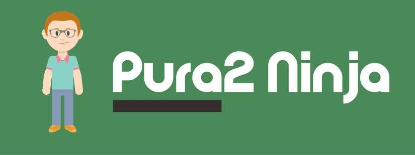 Pura2 Ninja