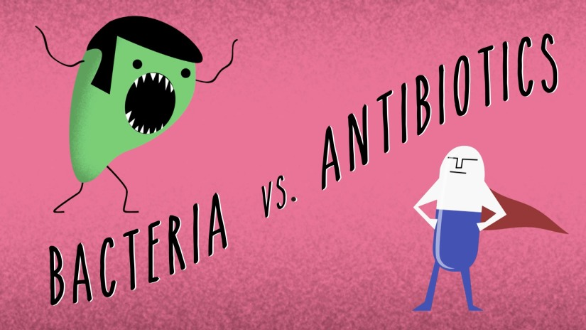 Bacteria vs Antibiotics.jpg